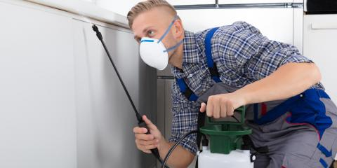 5 Benefits of Leaving Pest Control to the Professionals, Springfield, Ohio