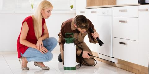 What Are the Benefits of Pest Control Inspections?, Versailles, Kentucky