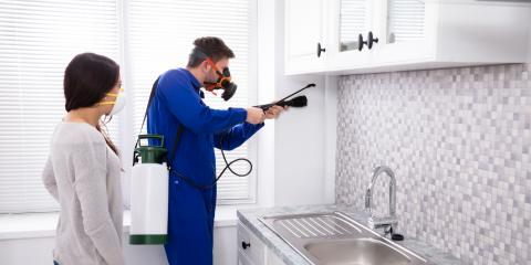 5 Tips to Keep Pests Out of the Home This Winter, Versailles, Kentucky