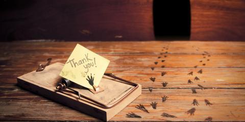 4 Fall Pest Control Tips From Cincinnati's Experts, Hamilton, Ohio