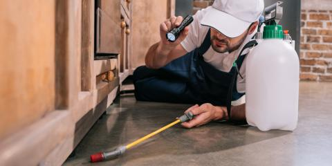 3 Pest Control Tips for the Holiday Season, Concord, North Carolina