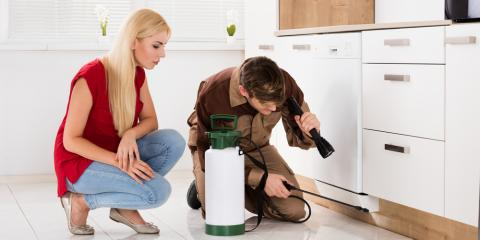 4 Easy Pest Management Tips to Protect Your Home, Roxbury, New Jersey