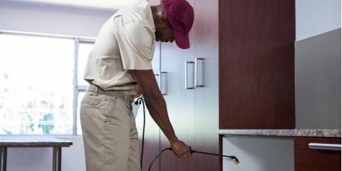 Statesboro's Trusted Pest Services Experts Share 3 Pest Control Tips, Statesboro, Georgia
