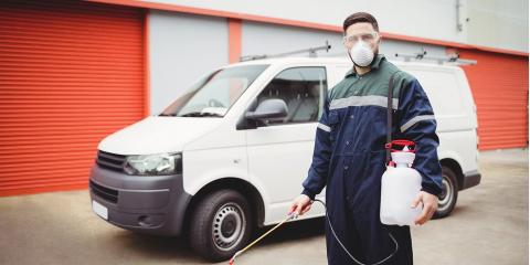 4 Common Types of Pest Control Services, North Hobbs, New Mexico