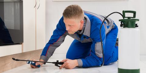 3 Reasons Pest Control Is Essential for Your Business, Rochester, New York