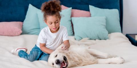3 Tips for Introducing a New Dog to Children, Gravois, Missouri