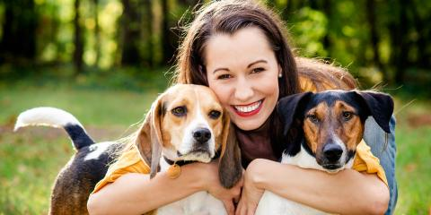 3 Tips for Protecting Your Pet From the Sun, Rhinelander, Wisconsin