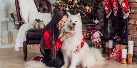 3 Pet Care Tips for a Safe Holiday Season, Mililani Mauka, Hawaii