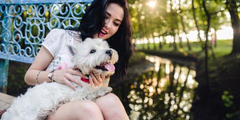 4 Ways to Pamper Your Pooch on Valentine's Day, Mililani Mauka, Hawaii