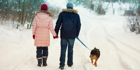 A Guide to Walking Your Dog in the Winter, Clarksville, Maryland
