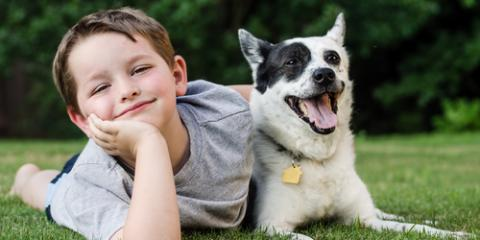 Everything You Should Know About National Kids & Pets Day, Columbia, Missouri