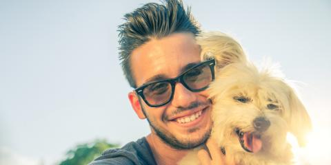 Milford Pet Clinic Discusses the Importance of Heartworm Prevention, Milford, Ohio
