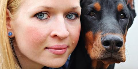 Pet Dermatology: When Should You Bring Your Pet to a Veterinary Dermatologist?, Sharonville, Ohio