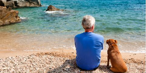 What to Do When an Aging Loved One Loses a Pet, Atlanta, Georgia