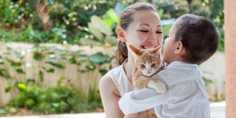 How to Help Your Child Deal With the Loss of a Pet, Honolulu, Hawaii