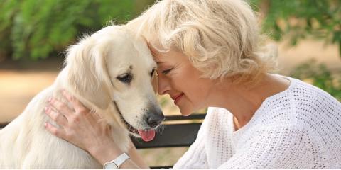 3 Suggestions to Prepare for the Pet Hospice Process, Atlanta, Georgia