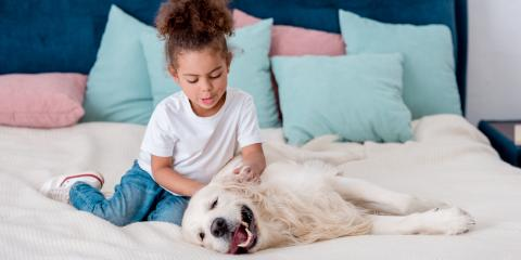 How to Help Your Child After They Lose a Pet, Koolaupoko, Hawaii
