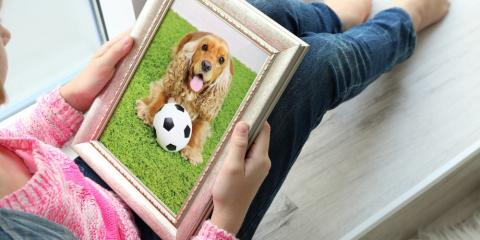 4 Creative Ways to Remember Your Pet, Springfield, Ohio