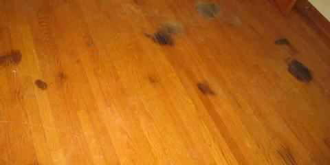 Patrick Daigle Flooring Answers FAQ's About Problems with Wood Floors, Manchester, Connecticut