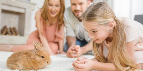 4 Kid-Friendly Starter Pets, Lincoln, Nebraska