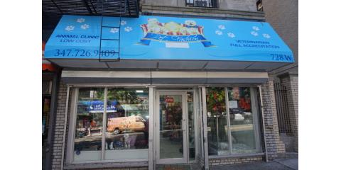 Pet Fashion and Grooming , Pet Day Care, Services, New York, New York