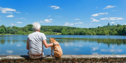 Lexington's Most Trusted Monument Company Suggests 3 Pet Memorials to Honor Departed Pets, Lexington, North Carolina