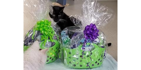 BOWLING FOR PETS FOR LIFE RAFFLE PRIZE SNEAK PEEK: The Dogfather Mobile Grooming Gift Baskets!, Stratford, Connecticut