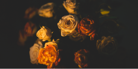 Manchester's Trusted Funeral Home Explains Burial Service Options, Manchester, Connecticut