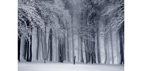 Inclement Weather Delay, 1, Virginia