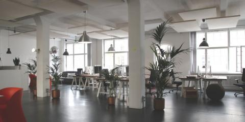 Five Easy Ways To Green Your Office, Staten Island, New York