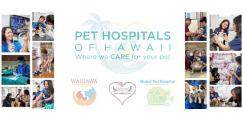Waipahu Waikele Pet Hospital Is Now Pet Hospitals of Hawaii, Ewa, Hawaii