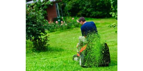 Ideal Lawn Care, Lawn Maintenance, Services, Stuarts Draft, Virginia