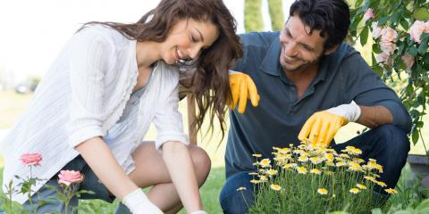 4 Ways to Keep Pests Away From Your Garden , Sagamore Hills, Ohio