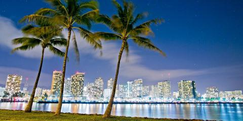 Phoenix Security Hawaii, Security Systems, Services, Honolulu, Hawaii