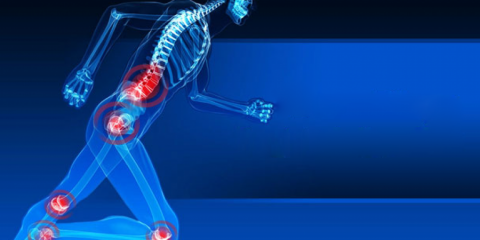 SportsMed Physical Therapy, Physical Therapy, Health and Beauty, Fair Lawn, New Jersey