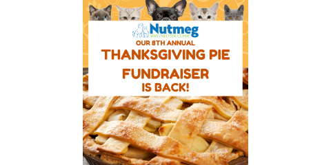Order a Pie with a Purpose before this Friday, Nov. 15th!, Stratford, Connecticut