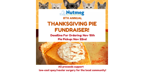 24 hours left to order a pie and reduce pet overpopulation!, Stratford, Connecticut