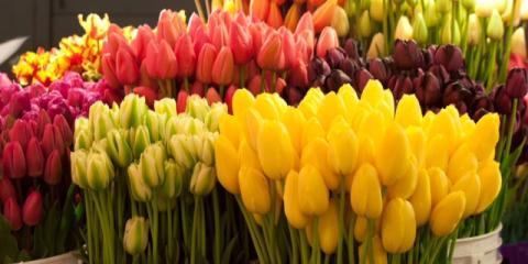 Piepmeier The Florist, Florists, Shopping, Cincinnati, Ohio