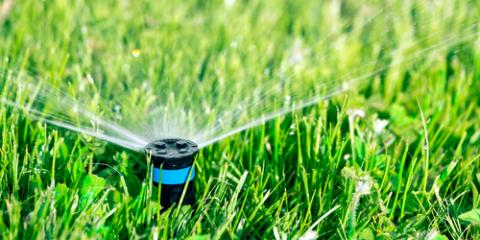 3 Common Problems You May Encounter With Your Sprinkler System, Pittsford, New York