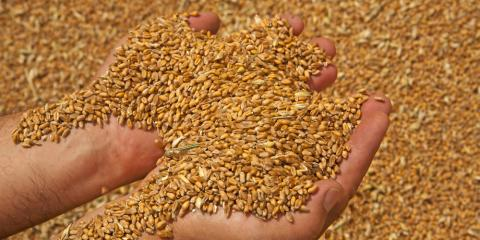 3 Tips for Grain Storage During the Winter, Platteville, Wisconsin