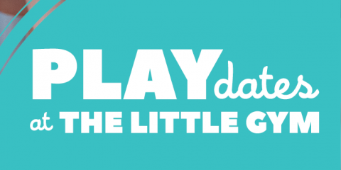 Private Play Dates are OPEN!!!!, St. Peters, Missouri