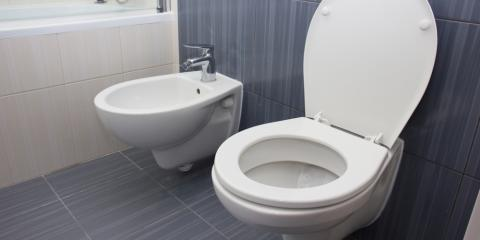 Plumbing Company Shares the Advantages of Low-Flow Toilets, Honolulu, Hawaii