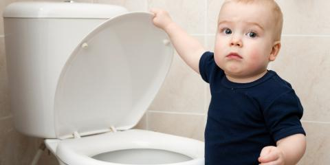 3 Household Items You Should Never Flush Down Toilets, Anchorage, Alaska