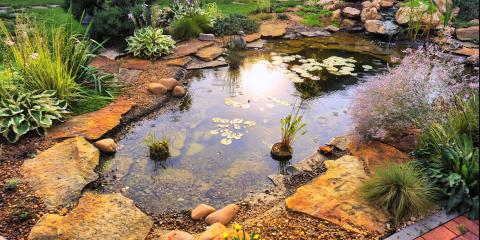4 Questions for a Potential Pond Builder, Ashland, Missouri