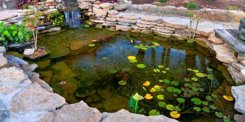 3 Steps to Creating an Eco-Friendly Pond, Ashland, Missouri