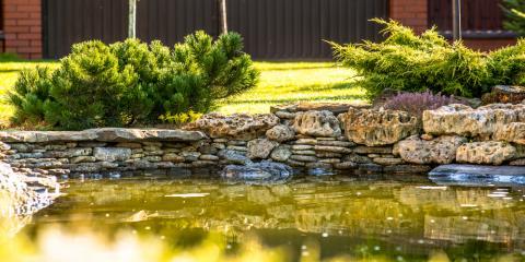 Dos & Don'ts of Water Pond Maintenance, Columbia, Missouri