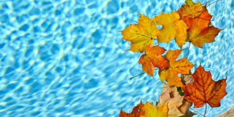 Why Fall Is Ideal for Pool Remodeling, Scotch Plains, New Jersey