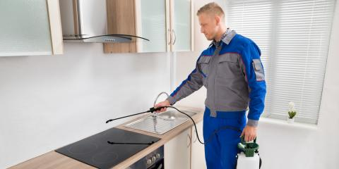 3 Differences Between Residential and Commercial Pest Control, Jasmine Estates, Florida