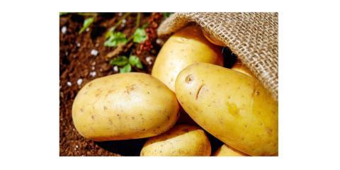 Taking Orders for Locally Grown Potatoes - 3 Varieties, Byron, Wisconsin
