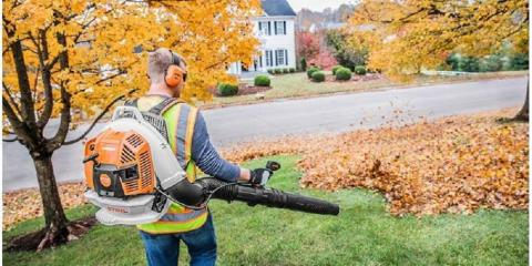 Can Fall Leaves Damage Your Lawn?, ,